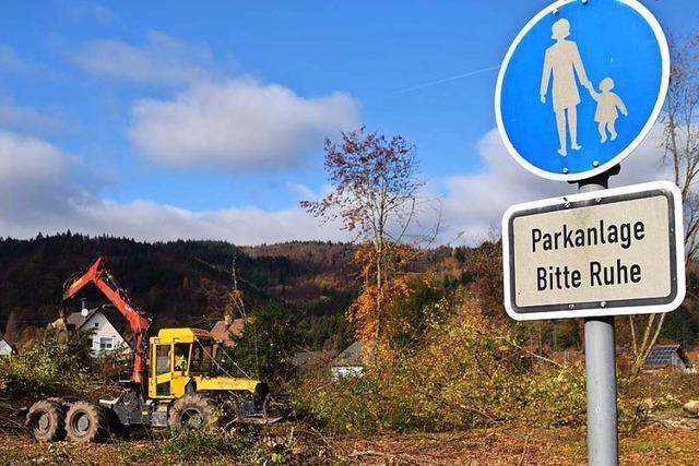 Die Brennet AG hat ihren Park in Hausen innerhalb eines Tages fast vollständig gerodet