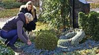 GRABSCHMUCK IM WINTER: Schön und frostfest