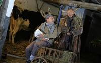 Ox und Esel nehmen im Theater der zwei Ufer ein Findelkind in Obhut