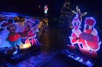 Weihnachtszauber im Vorgarten