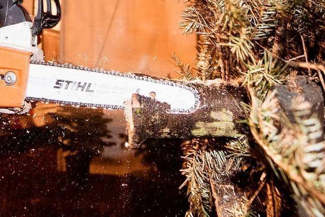 Unbekannte sägen Weihnachtsbaum in Wehr ab