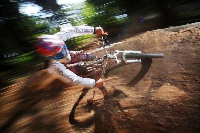 Illegale Mountainbike-Trails machen dem Auer Wald zu schaffen