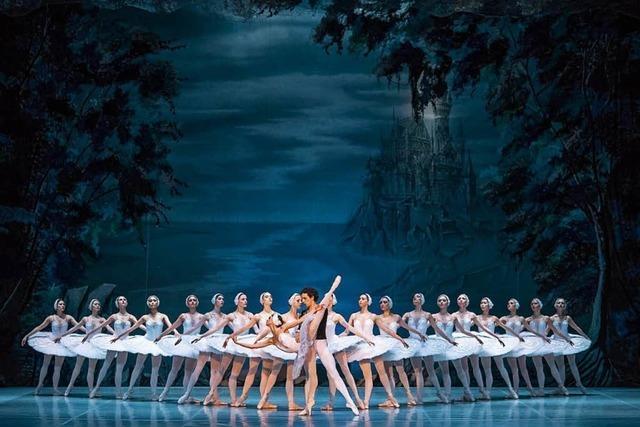Schwanensee und La Traviata - Oper und Ballett in Freiburg