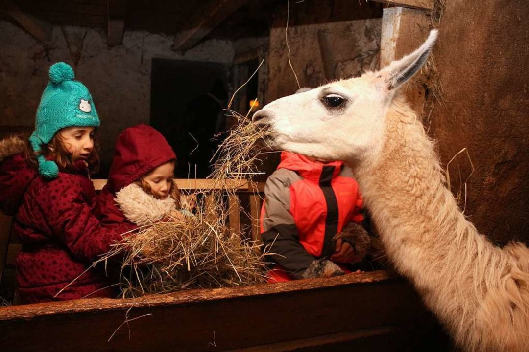 Tierische Freude hatten die Kleinsten ...amas zur  Stallweihnacht in Fahrnbuck.    Foto: Anja Bertsch