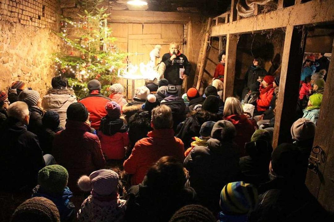 Schön weihnachtlich war es im Stall.    Foto: Anja Bertsch