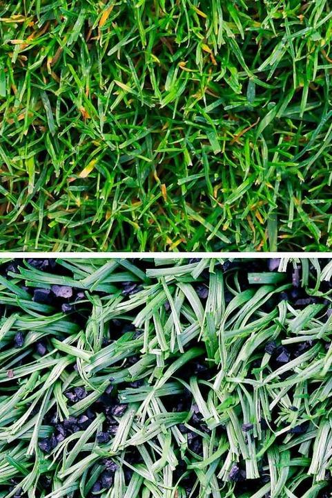 Oben ist echter Rasen zu sehen, unten Kunstrasen  | Foto: Fredrik von Erichsen