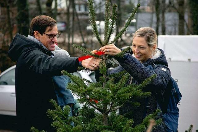 Weihnachtsbaum-Aktion für BZ-Werbekunden in Zarten