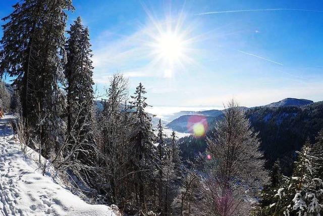 Winterwunderland im Hochschwarzwald