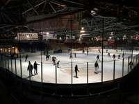 EHC Freiburg will Namensrechte an maroder Eishalle verkaufen
