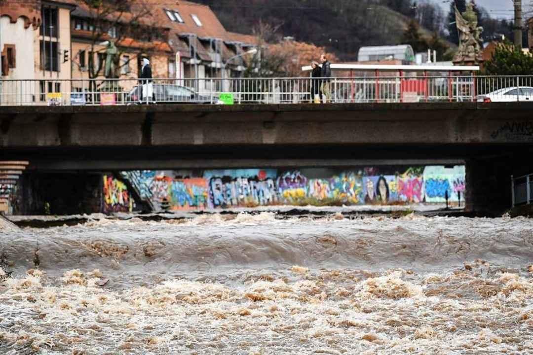 Nach den Niederschlägen der vergangenen Tage führt die Dreisam wieder mehr Wasser. Foto: dpa