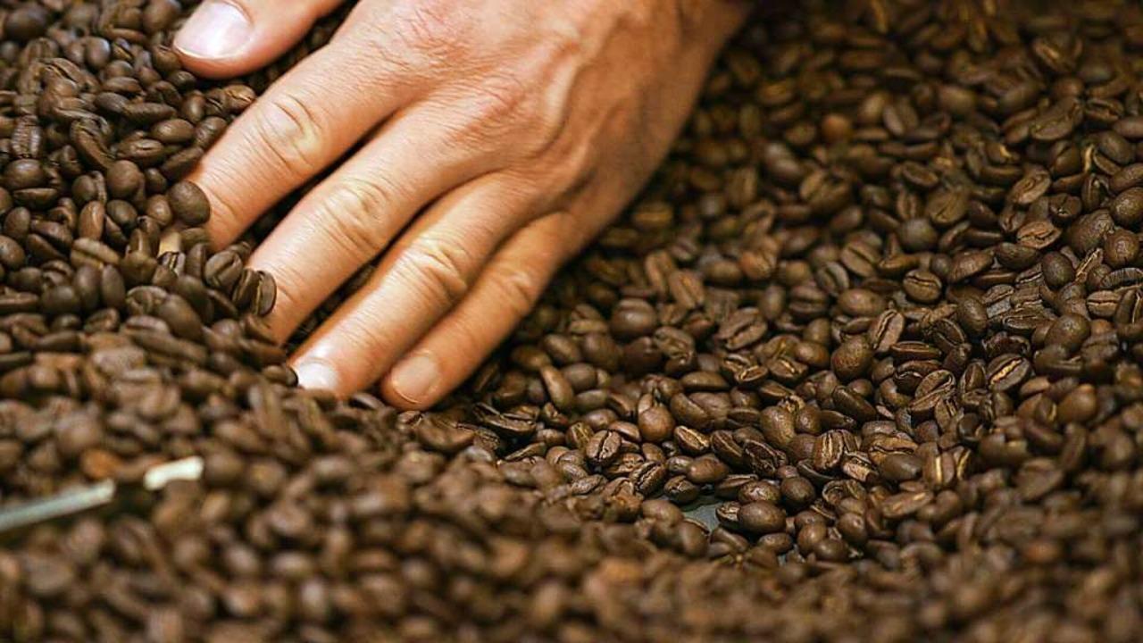 In der Capulus Kaffeerösterei im hessi...nt man, wie köstlicher Kaffee gelingt.    Foto: Falko Wehr