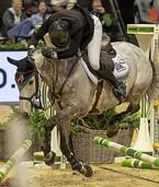 """""""Ein Reiter ist eben nur ein Reiter mit seinem Pferd"""""""