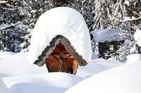 Warum ist Schnee manchmal pulvrig und manchmal pappig?