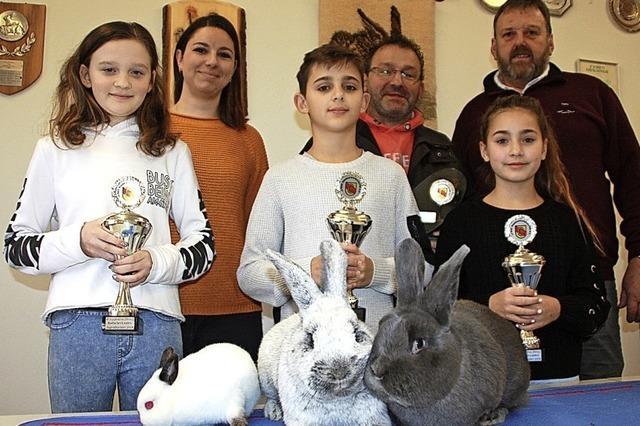 Jungzüchter sahnen Preise für Kaninchen ab