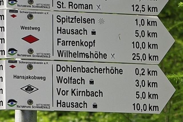 Im Juli wird der Badische Weinradweg eröffnet