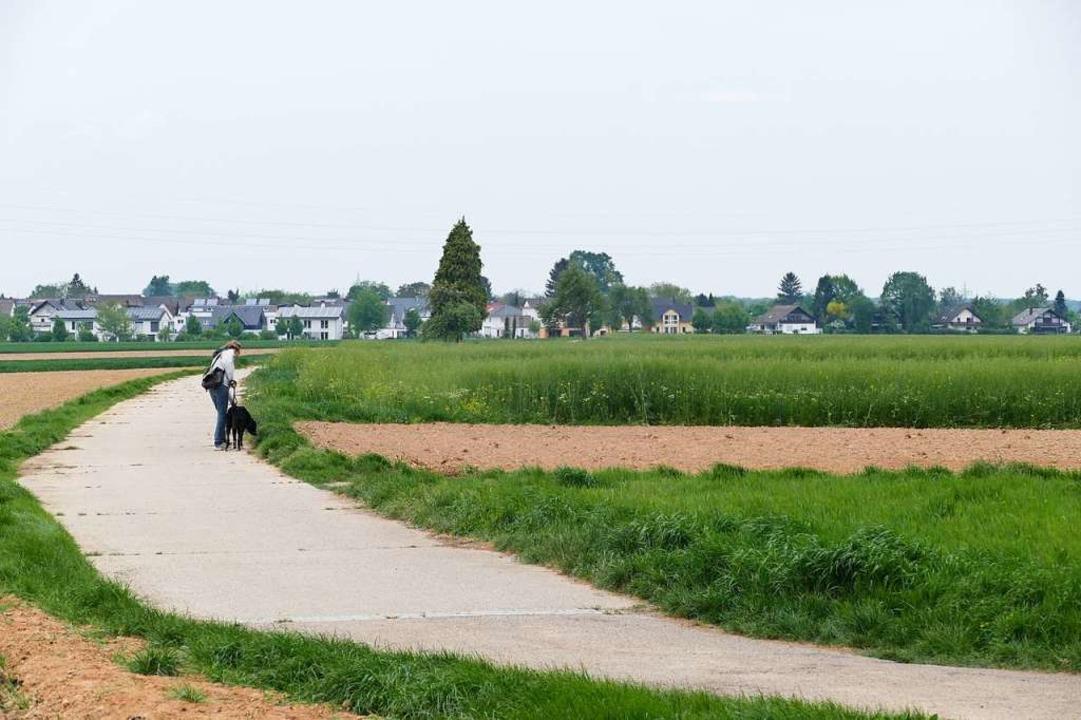 Noch ist das freie Feld Ackerland, grüne Lunge und Naherholungsgebiet.    Foto: Ralf Burgmaier