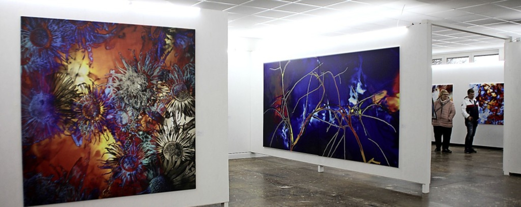 Große Druckarbeiten von Peter Boehler in der Galerie M Beck in Ebersweier   | Foto: Eri Sieberts