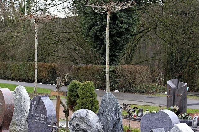 Bäume für den Friedhof
