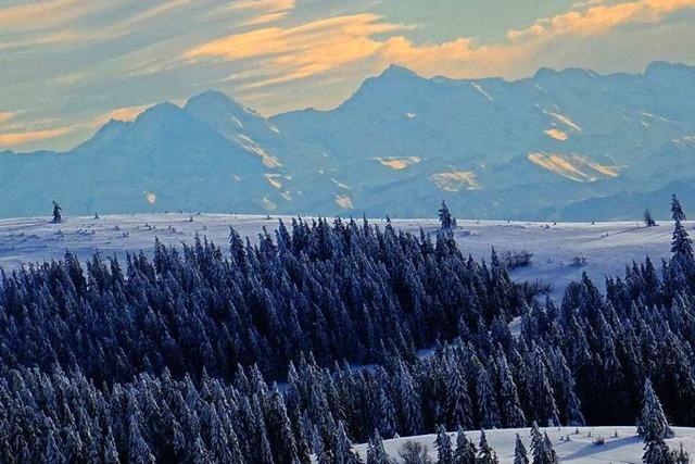 Ein Winterspaziergang am Feldberg