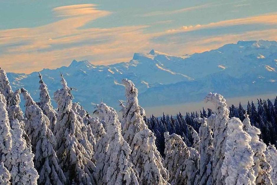 Winterspaziergang am Feldberg. <?ZL?> (Foto: Paul G. Wiesenberg)