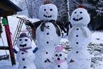 Fotos: BZ-Leser präsentieren zum Welttag des Schneemanns ihre Schneemänner