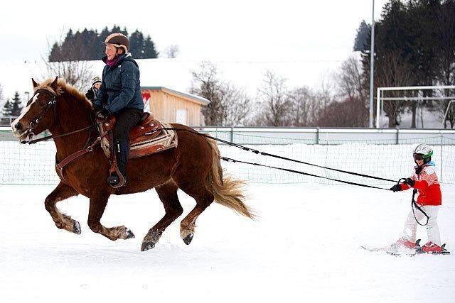 Fotos: 500 Zuschauer beim St. Märgener Pferdeschlittenrennen
