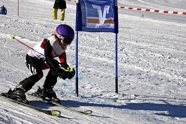 Talente auf dem Ski