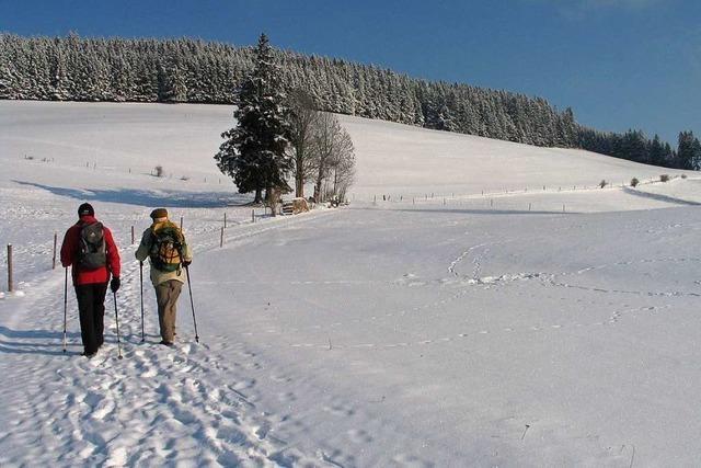 Todtnauer Schwarzwaldverein sieht Perspektive