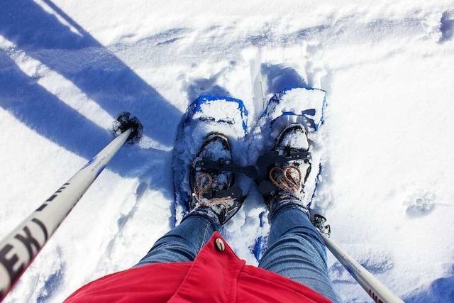 Selbstversuch Schneeschuhwandern: Im Zwiebellook und im Gänsemarsch auf den Feldberg
