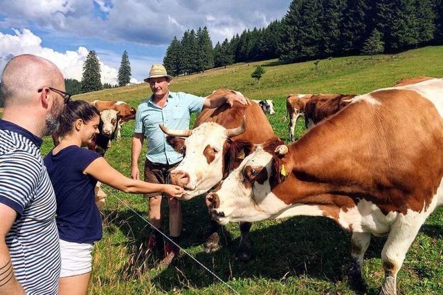 So kommt Rindfleisch aus dem Südschwarzwald zur Stadtbevölkerung