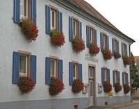 Das alte Rathaus soll weg