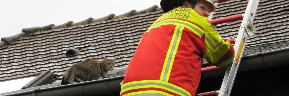 Feuerwehren beklagen zu viele Notrufe wegen Lappalien im Breisgau