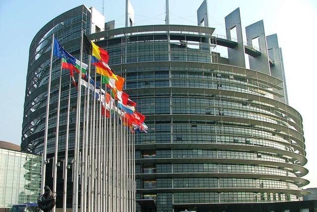 Erleben Sie das Europäische Parlament in Straßburg und sprechen Sie mit dessen Vizepräsidentin Evelyne Gebhardt sowie Andreas Schwab!