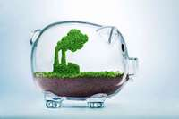 Wie südbadische Unternehmen das Klima schützen