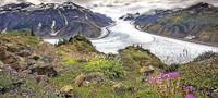 Vortrag über Kanada und Alaska in Müllheim
