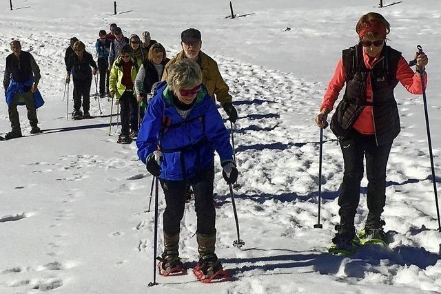 Herrliche Touren im Schnee