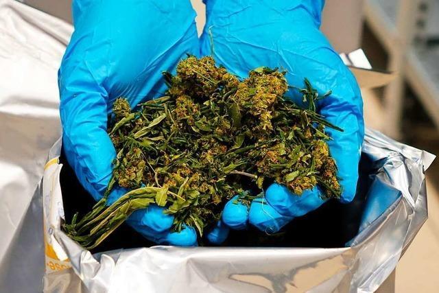 Milliliter statt Milligramm: Epilepsie-Patientin erhält 25-fache Cannabis-Dosis