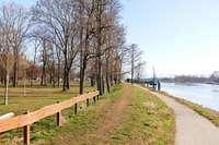 Das neue Quartier am Rhein bietet Breisach glänzende Perspektiven
