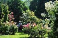 Genießen Sie die Parklandschaft des Landhauses Ettenbühl mit 15 Prozent BZ-Card-Rabatt!