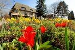 Fotos: So bunt ist der Frühlingsanfang in Ehrenkirchen und Umgebung