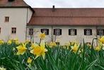 Fotos: Der Frühling ist im Dreisamtal angekommen