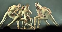 Eine packende Verneigung vor der israelischen Tanzszene