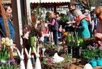 Fotos: Die Frühlingsmärkte in Gundelfingen und Stegen