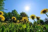 Am Maifeiertag scheint die Sonne – dann wird's ungemütlich