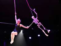 Fotos: Elftes Internationales Circus Festival Young Stage in Basel