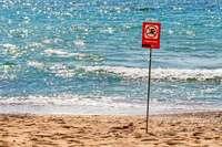 Abwasser am Badestrand: Palma de Mallorca braucht ein neues Klärwerk