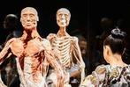 Fotos: So war das Körperwelten-Pre-Opening mit Medienkunden der BZ