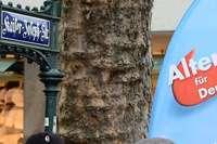Auseinandersetzung am AfD-Wahlkampfstand in der Innenstadt
