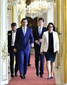 Österreich steht wegen Skandal-Video vor Neuwahl