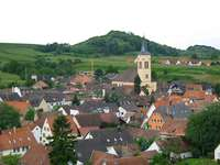 In Vogtsburg treten nur Freie Wähler und CDU an